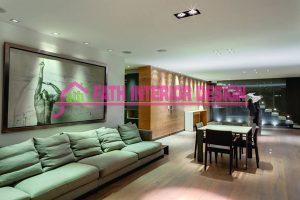 interior-furniture-solo
